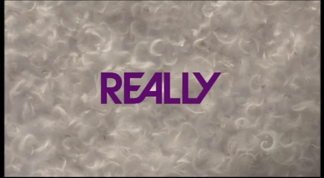 Really: 2013 Idents | Presentation Archive